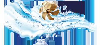 Logo TME